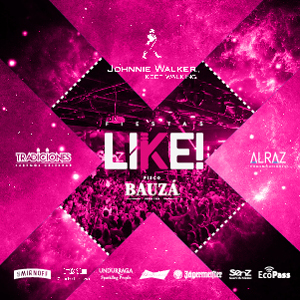 Like ok arts ecopass 03
