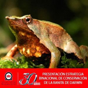 Ecopass ranita
