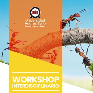 300x300 workshop interdisciplinario ok