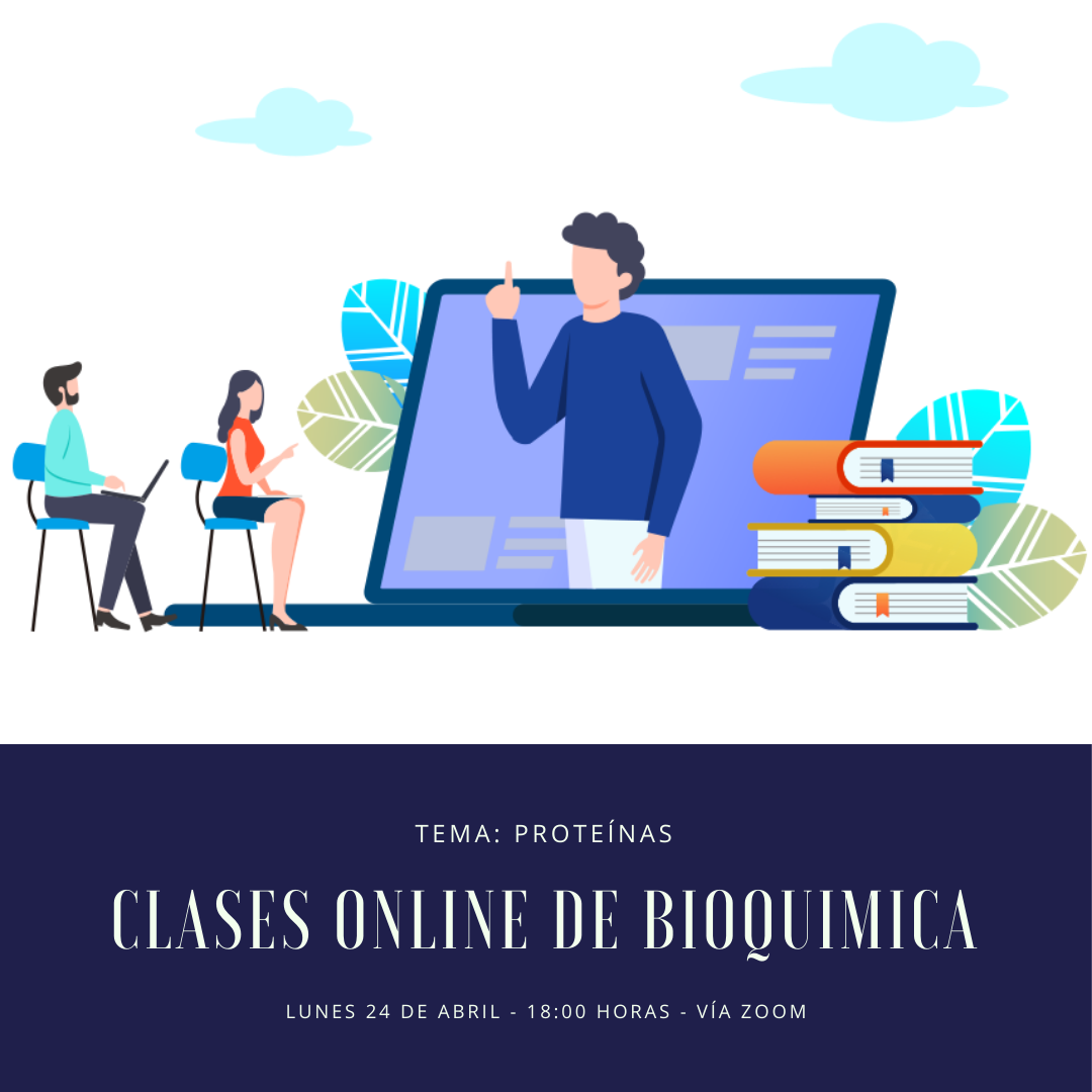 Clases grupales online